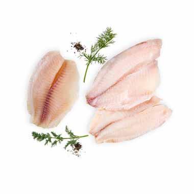 קילו מושט בלי עור ארוז כל דג בוואקום קהילות נטו