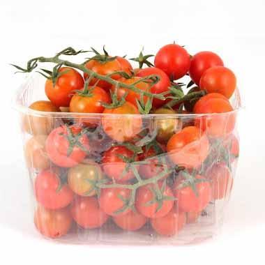 עגבניות שרי בקופסה