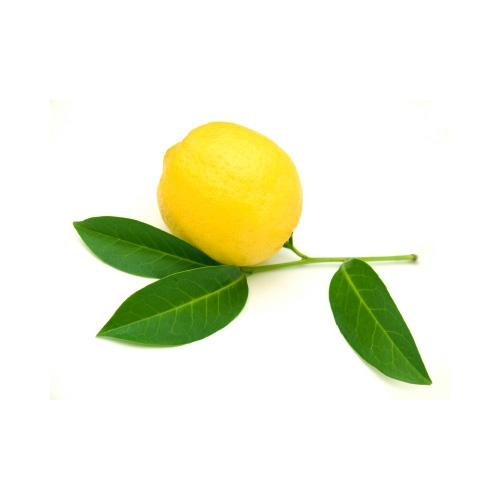 לימון-מחיר  לק