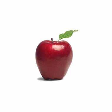 תפוח עץ חרמון בינוני מחיר לקילו