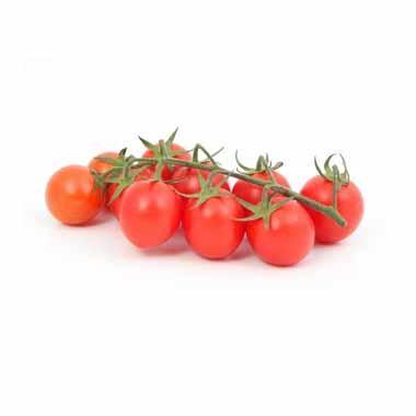 עגבניות שרי מחיר לקילו