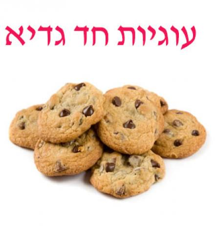 .עוגיות שוקו צ'יפס 500 גרם חד גדיא עד