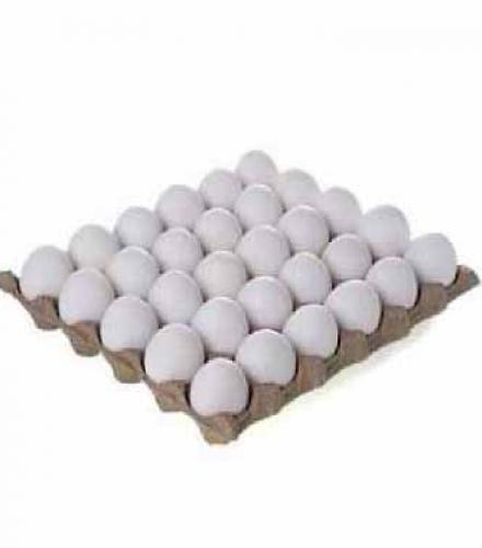 L ביצים 30 יחידות