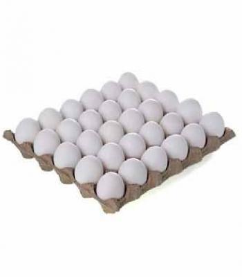 תבנית ביצים S