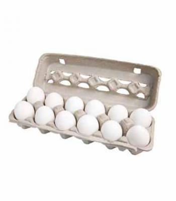 ביצים 12 יחידות גדול