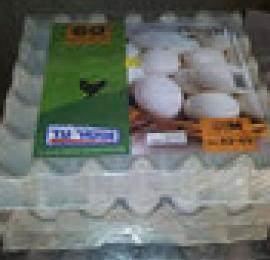 ביצים בינוני קצה התוקף בקירור לשימוש מיידי מחיר ל- 60 ביצים
