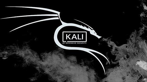 أقوى وأسرع مرجع لتحسين الكالي لينكس  Kali Linux 2020.4